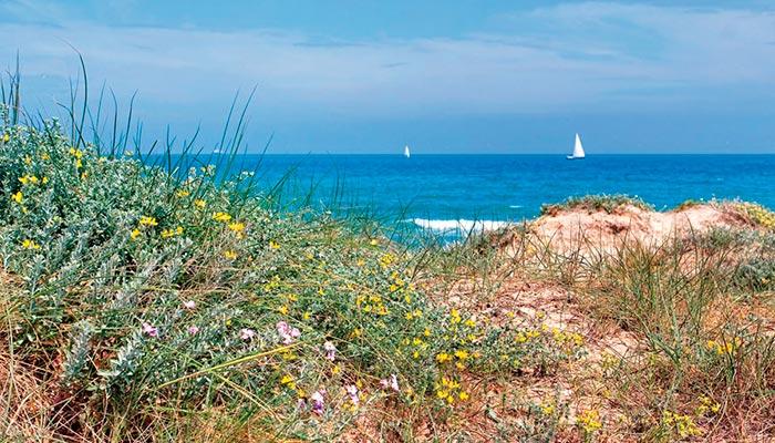 best beaches in Spain, El Saler (Valencia)