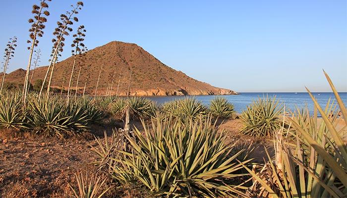 best beaches in Spain, Los Genoveses (Almeria)