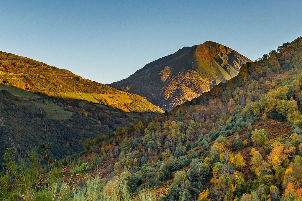 best destinations to travel during autumn, Forest of Muniellos, Asturias