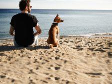 playas de Menorca para ir con perros