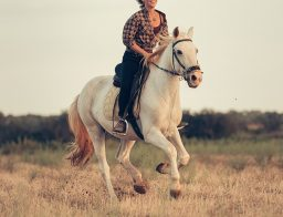horse riding in Mallorca
