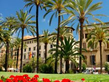 free tours in Mallorca