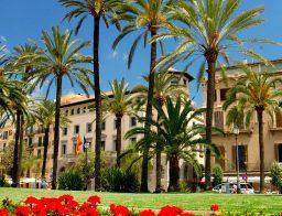 Kostenlosen Führungen auf Mallorca