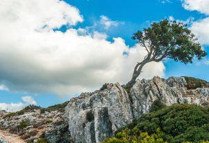 Mountainbike auf Mallorca