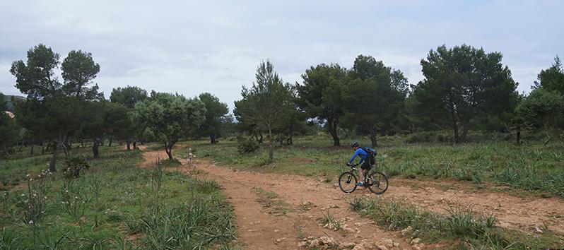 turismo deportivo en Mallorca_Mountain bike